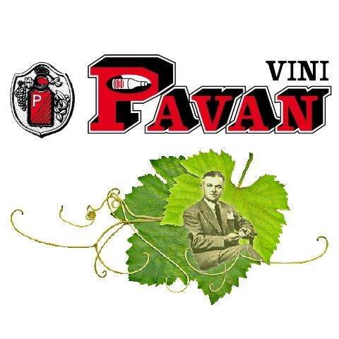 Vini Pavan